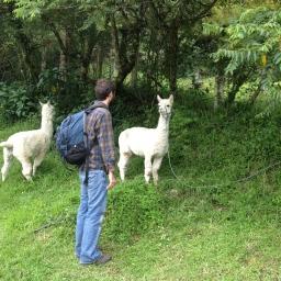 Life in Cuenca
