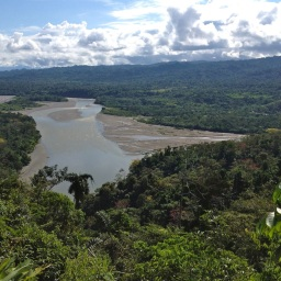 7 Days in the Amazon Rainforest